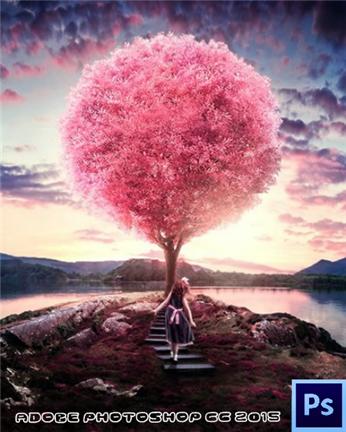 Adobe Photoshop CC (2016)