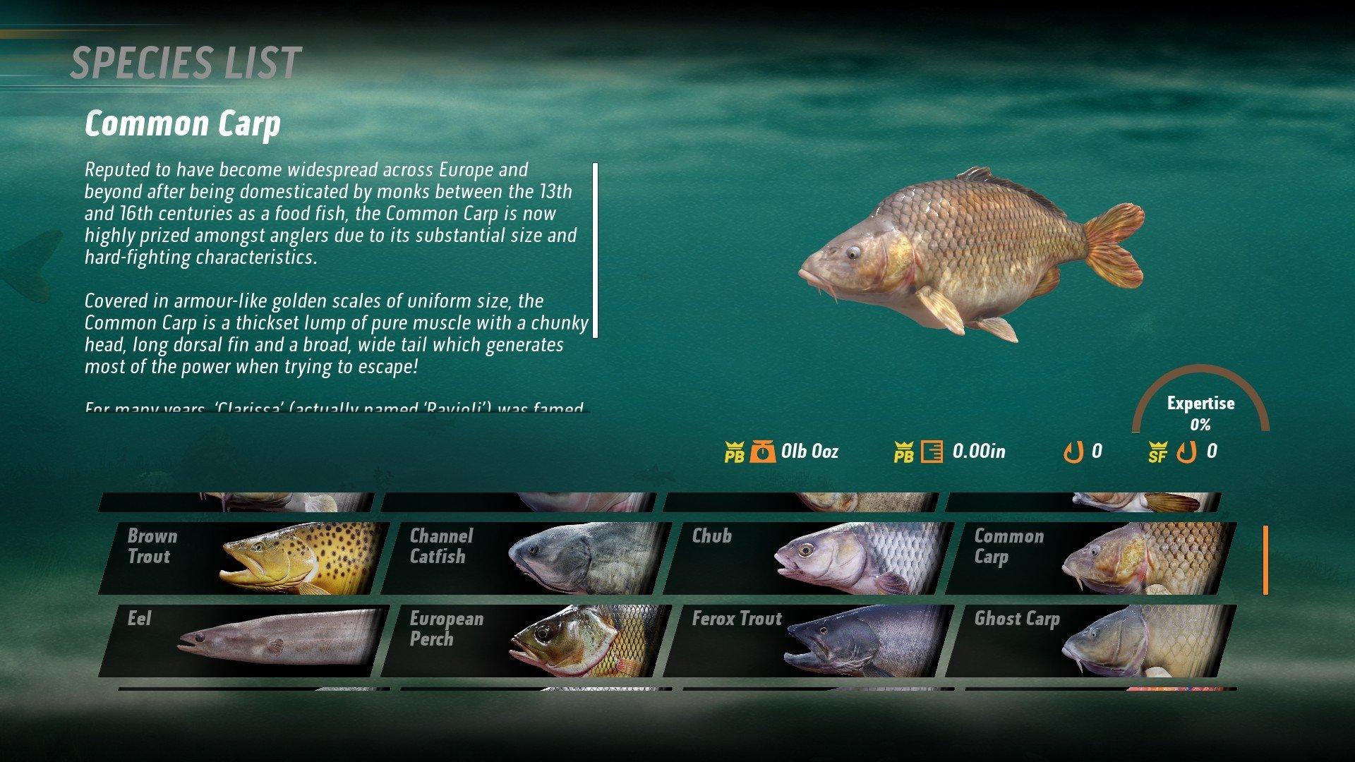 Скриншот к игре The Catch: Carp & Coarse (2020) скачать торрент RePack
