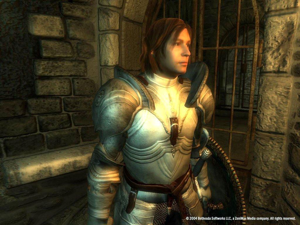 Скриншот к игре The Elder Scrolls IV: Oblivion Game of the Year Edition Deluxe v.1.2.0416 CS (12788) [GOG] (2007)